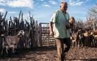 MP de Bolsonaro desmonta Previdência Rural e penaliza trabalhador do campo